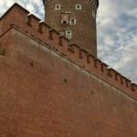 Krakow — Stock Photo #25951019