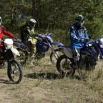 ������, ������: Motocross