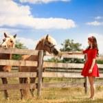 Woman feeding her horse — Stock Photo