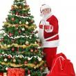 Santa beside Christmas tree with gift — Stock Photo