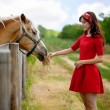 Woman feeding her horse — Stock Photo