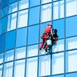 Window washer  — Stockfoto