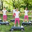 Outdoor fitness class — Stock Photo