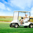 Young mdriving golf buggy — Stock Photo #20180483