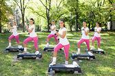Women doing fitness exercises in park — Foto de Stock