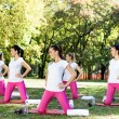 Women in aerobics class. — Stock Photo #24892449