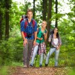 Group of man and women during hiking excursion in woods — Stock Photo