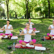 Yoga group — Stock Photo #30398475