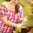 Female vintner — Stock Photo