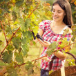 Smiling young womin vineyard — Stock Photo #35596887