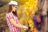 Girl in vineyard — Stock Photo