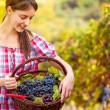 Young woman with basket full of grapes — Stock Photo