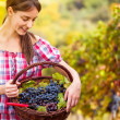 Young woman with basket full of grapes — Stock Photo #35602931