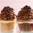 Chocolate cupcake — Stock Photo