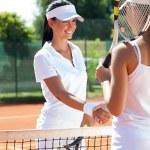 Female tennis players shaking hand — Stock Photo #42793251