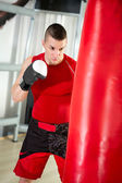 Young boxer  — Foto de Stock