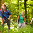 Three friends hiking through the forest — Stock Photo #44167421