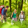 Hiking through the forest — Stock Photo