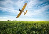 Plane sprayed crops in the field — Foto de Stock