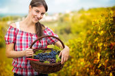 Woman with basket full of grapes — Stock Photo
