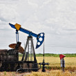 Oil pump - Stockfoto