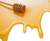Puddle of honey — Stock Photo
