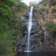Waterfall Gully — Stock Photo