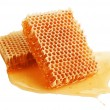 Fresh honey in comb — Stock fotografie