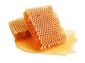 新鲜蜂蜜在梳子 — 图库照片