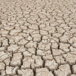 Closeup of dry soil — Stock Photo