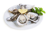Half a dozen oysters — Stock Photo