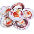 Stock Photo: Half dozen fresh opened scallop