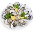 Stock Photo: Dozen oysters on white plate