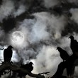 Vultures silhouetted against a full moon and spooky sky — Stock Photo