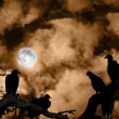 Stock Photo: Vultures silhouetted against full moon and spooky orange sky