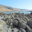 Rocky beach on the Lost Coast of California - 图库照片
