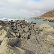 Rocky beach and clouds on the Lost Coast of California - 图库照片