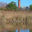 Stock Photo: Currituck Beach Lighthouse near Corolla, North Carolinvert