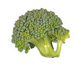 Floret of broccoli isolated against white — Stock Photo