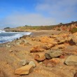 Pebble beach at Bean Hollow State Beach in California — Stock Photo