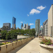 Millennium Park and a partial skyline of Chicago — Stock Photo
