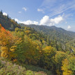 Frühherbst im Great-Smoky-Mountains-Nationalpark — Stockfoto #33511869