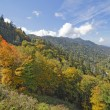 begin van de herfst in great smoky mountains national park — Stockfoto #33511869