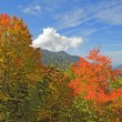 begin van de herfst in great smoky mountains national park — Stockfoto #33515321