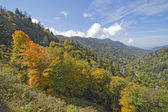 Begin van de herfst in great smoky mountains national park — Stockfoto