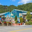 Ripleys Aquarium of the Smokies in Gatlinburg, Tennessee — Zdjęcie stockowe #33738677