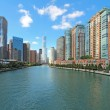 Skyline of Chicago, Illinois along the Chicago River — Stok fotoğraf