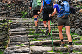 Trekking nepal — Stock Photo