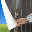 Man change locked iron bars door to green meadow and clear blue — Stock Photo #34809999
