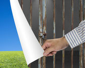 Man change locked iron bars door to green meadow and clear blue — Stock Photo